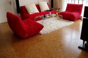 软木地板保养,软木地板要如何维护和保养
